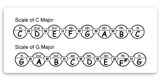 major scale construction using whole steps and half steps